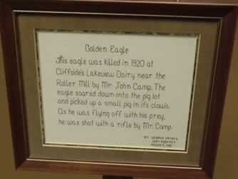 Framed needlepoint of words describing history of the eagle.