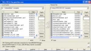 Screen shot of program in operation.