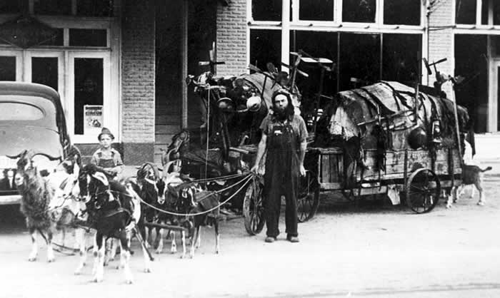 "Parked on a small-town street, a wagon piled high with what appears to be junk, is hitched up to eight or ten goats. Their owner is bearded and wear bib overalls. This is the famous ""Goat Man."""