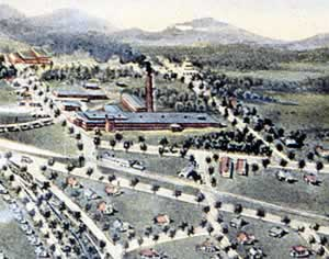 Graphic rendering of the village as seen from the air.