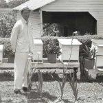 Man in yard near bee hive boxes