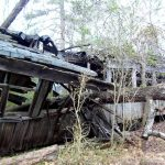 Wooden passenger car in woods smashed by fallen tree.