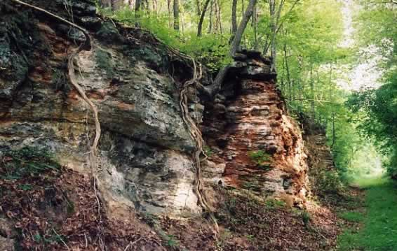 A craggy embankment showing strata of rocks and minerals.