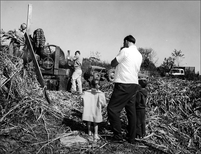 The kids were about three years old. Two men are feeding stalks into the 'mill'.
