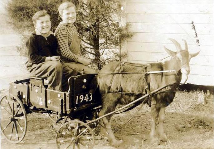 Jimmy and Harry Ingram, Jr.
