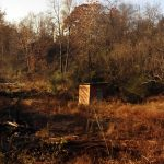 Trees and larger undergrowth have been cut away leaving the small wooden wellhouse standing near what was once the little street called Goforth Flat.