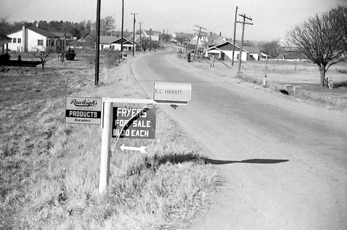 "A quiet highway. Roadside houses further on. In the foreground is E. C. Harris' mailbox. Attached to the post are a couple of ads. One, in hand lettering, says ""Fryers for sale $1.00 each."""