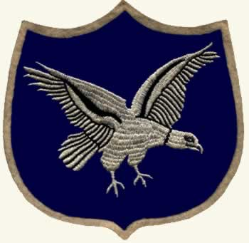 Eagle on shield patch