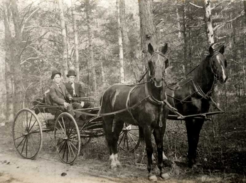 Charles and Grover Haynes, as young men, seated in their horse-drawn buggy.