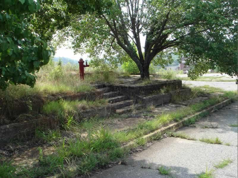 A curb, sidewalk, wall and steps overgrown with weeds, which once fronted Hamrick's Super Market. Vegetation and hard freezes have taken their toll on the concrete, which is cracked and crumbling.