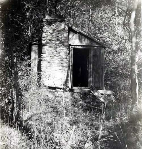 Jim's Cabin - April 1953 - An old abandoned one-room cabin in dense woods.